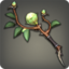 weapon_wandofgales_arr.png