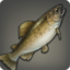 item_warmwatertrout_ff14arr.png